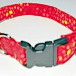Red Orange Dog Collar With Confetti..