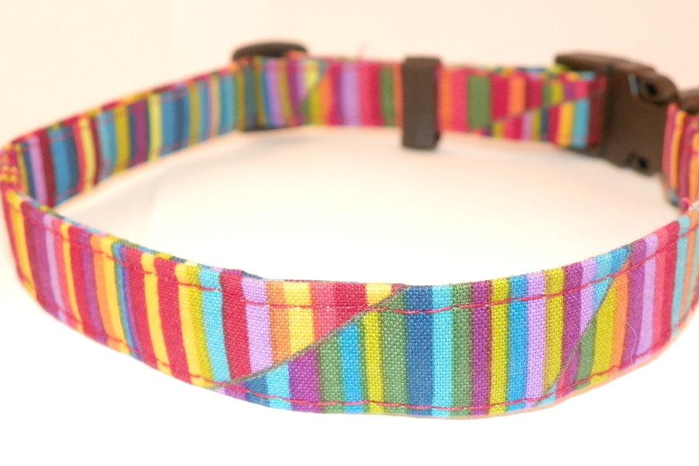 "Adjustable Dog Collar - Bright Rainbow Swirls & Stripes Medium 12-19"""