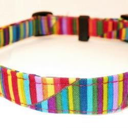 "Adjustable Dog Collar - Bright Rainbow Swirls & Stripes Size XL 17-29"""